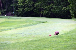 よく整備されたパターゴルフ場