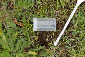 採集に使った薬さじと、女王アリと穴